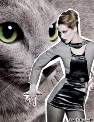 MAC Fabulous Felines — Palace Pedigreed